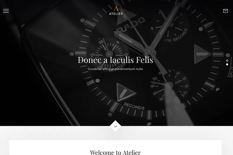 Sample WordPress theme - jewelry store.