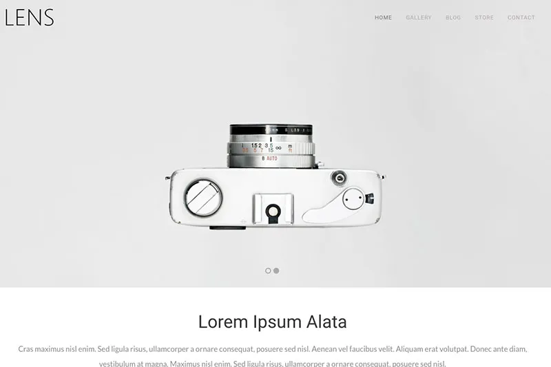 Sample WordPress theme - cameras.