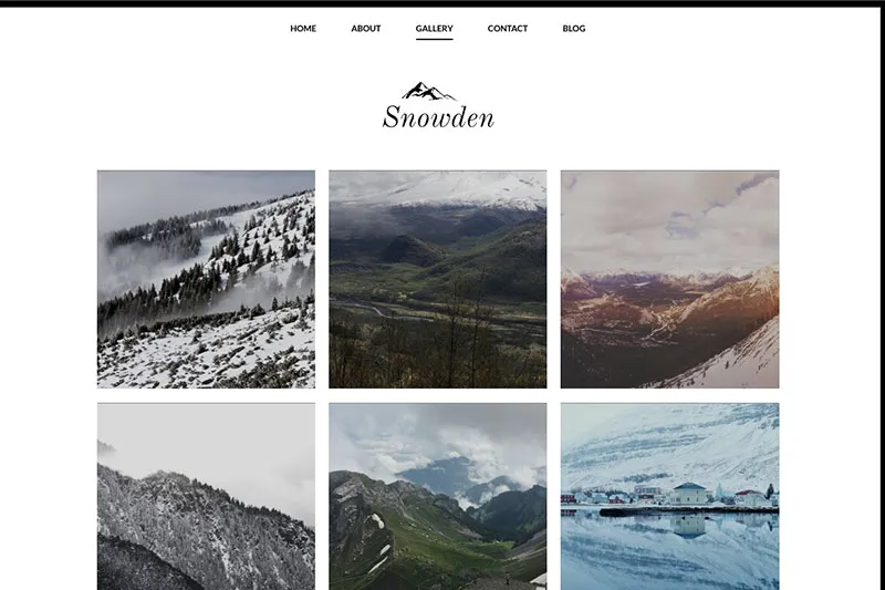 Sample WordPress theme - photo portfolio.