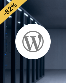 Take advantage of super-fast hosting for WordPress from IONOS.